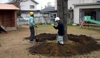 園庭木の廻り掘る