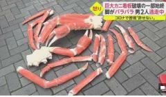 脚がバラバラに…大阪・ミナミで巨大カニ看板破壊される 社長「人間として許せない」男2人逃走中