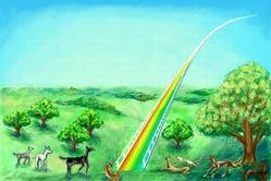 Rainbow-Bridge-heaven