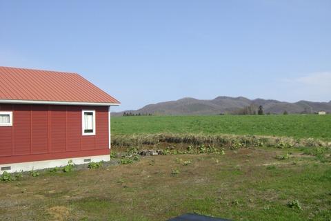 コテージ裏の大草原