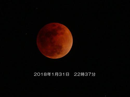 20180131皆既月食-1060193-Edit