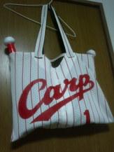 carpbag1