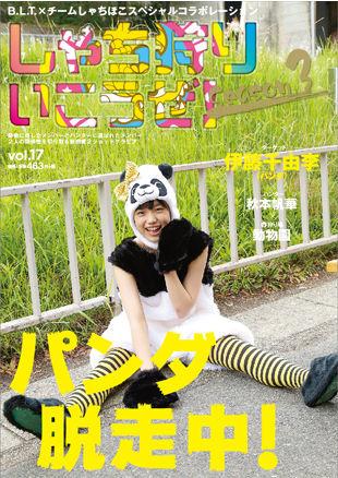 cover_vol17