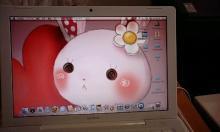 デスクトップもうさぎ。