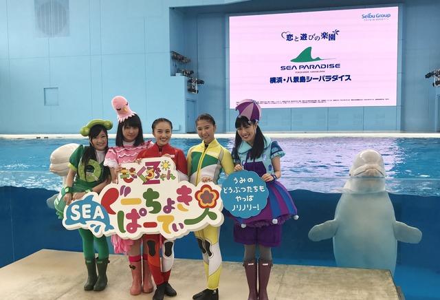 【ももクロ】『ももたまいシロイルカに乗る!』4/26(水)「ももくろちゃんZ ぐーちょきSEAぱーてぃー@八景島シーパラダイス」まとめ