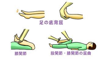 挿し絵-足の底背屈2