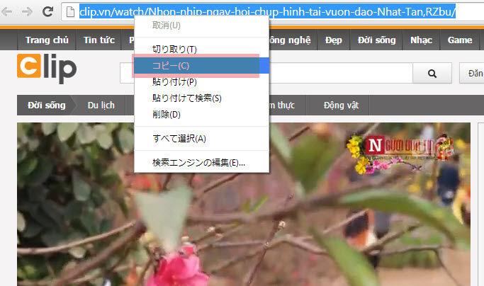 Clipbox+(クリップボックスプラス)も動画がダウ …