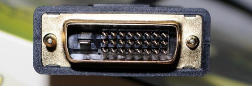 DSC_1155