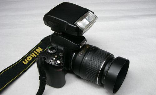 IMGP0236