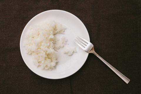 rice_toushitsuseigen