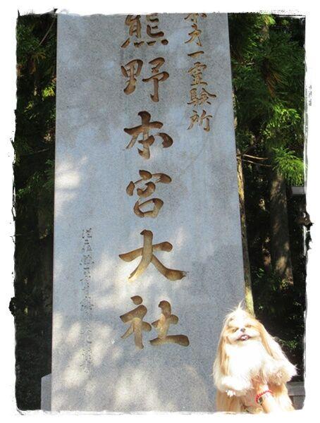 IMG_5373ユニ