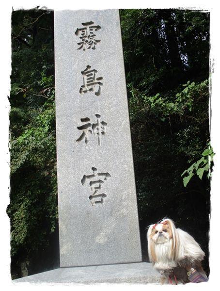 IMG_1877ユニ
