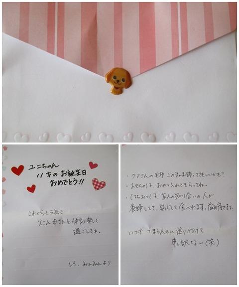 catsお手紙