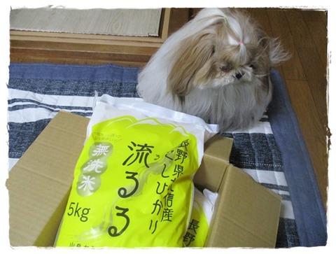 IMG_4993ユニ