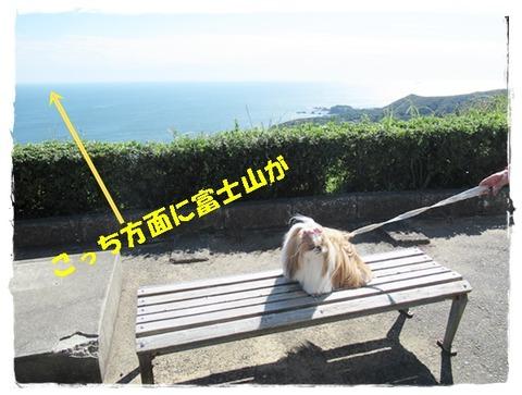 IMG_5425ユニ