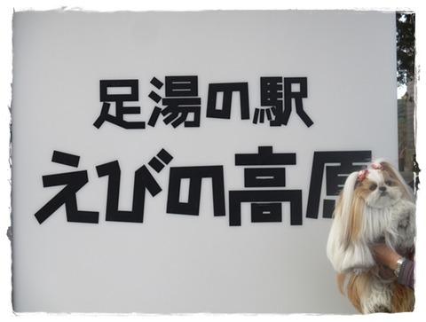 IMG_1875ユニ
