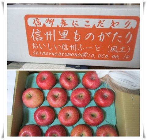 catsリンゴ