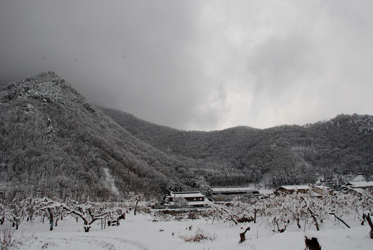 雪景色の雁田山(長野県下高井郡小布施町)
