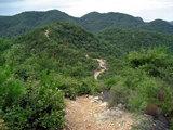西山への稜線