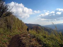 金時山から矢倉峠へ