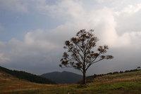 091015放牧地から見た碁盤石山