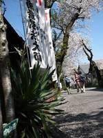 090409浅間神社