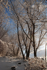 大峰山の樹氷1