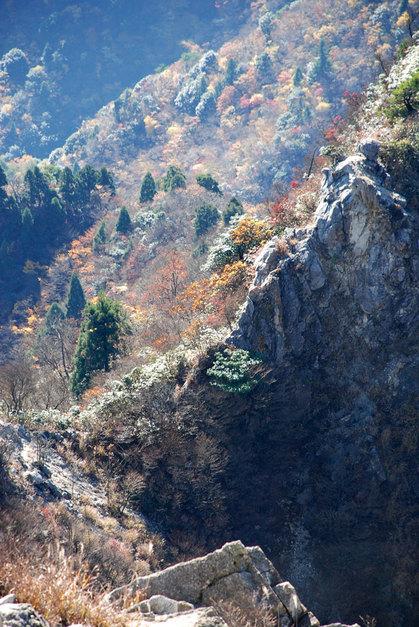 081113鎌ガ岳20