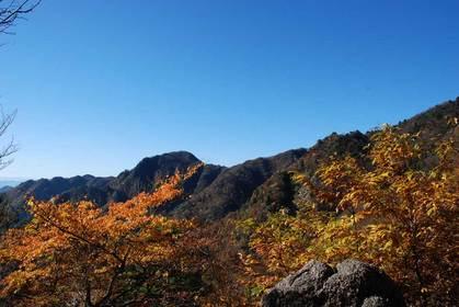 081113鎌ガ岳10