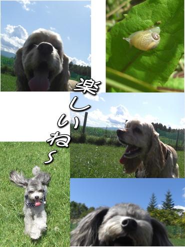 ニセコ家族旅行〜U^ェ^U
