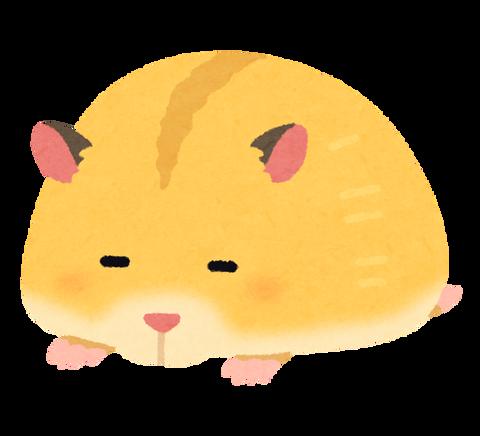 hamster_sleeping_golden