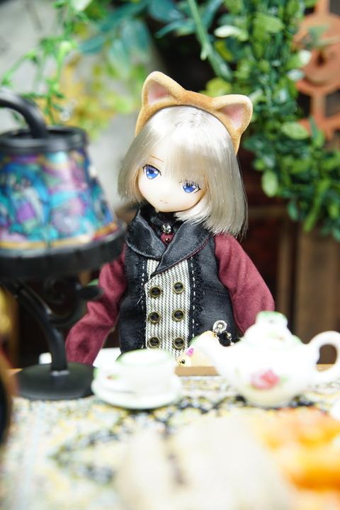 orange_pekoe_4_2019_9_8_DSC07666