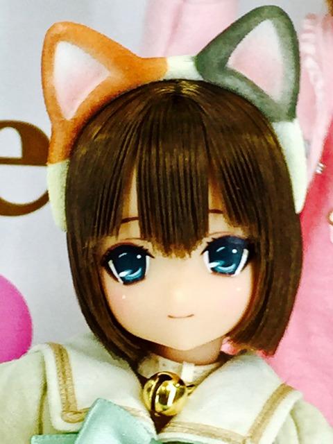 orange_pekoe_1_2017_6_9_IMG_3941