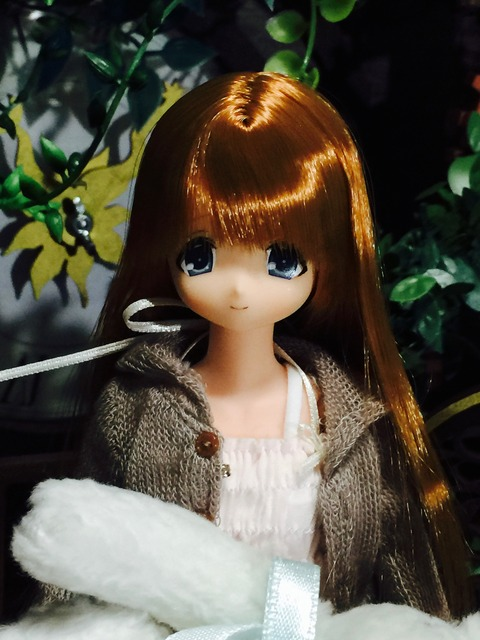 orange_pekoe_1_2021_9_16_IMG_8260
