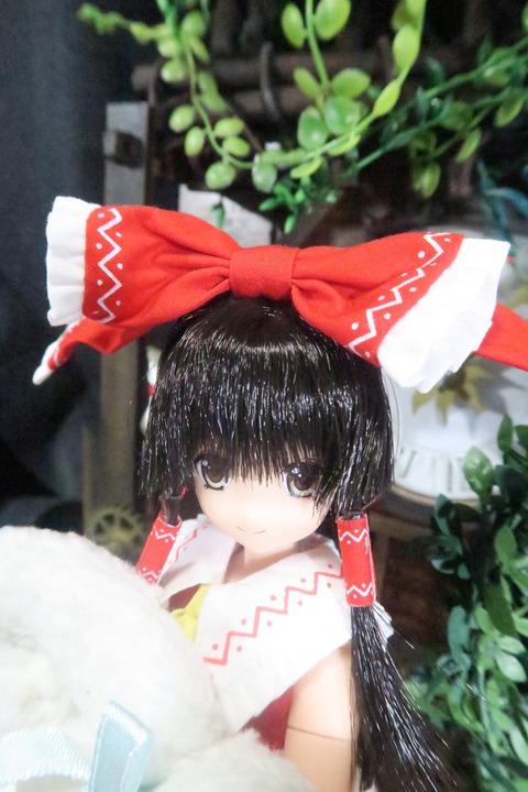 orange_pekoe_1_2017_2_4_IMG_3945