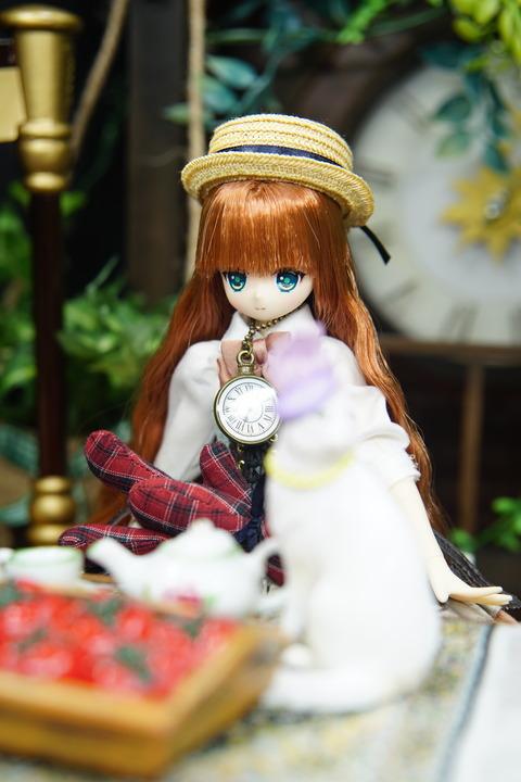 orange_pekoe_3_2019_9_28_DSC09386