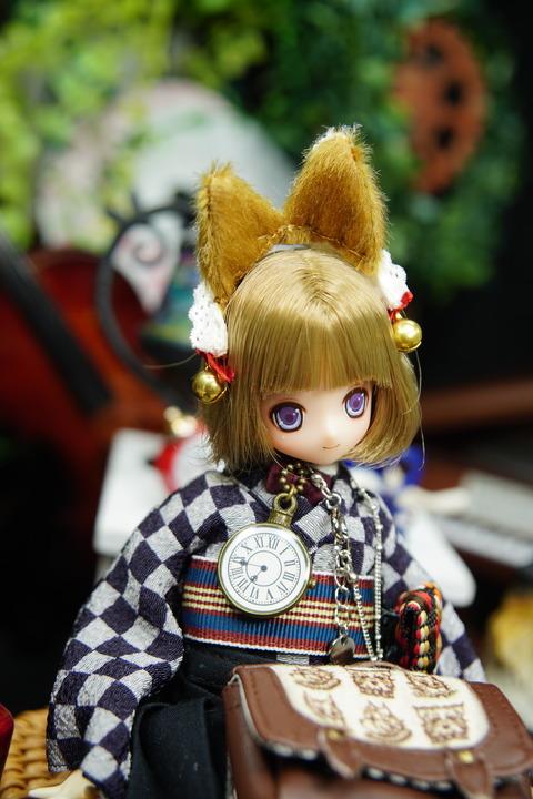 orange_pekoe_8_2020_5_17_DSC07355