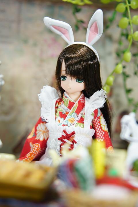 orange_pekoe_1_2018_7_25_DSC05225