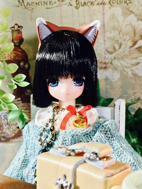 orange_pekoe_1_2017_7_4_IMG_1697
