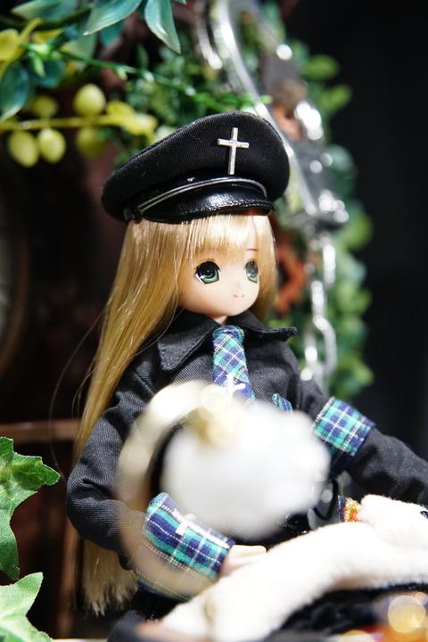 orange_pekoe_1_2019_1_9_DSC07364