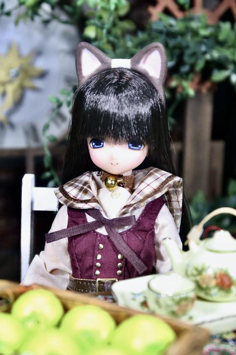 orange_pekoe_1_2021_9_12_IMG_1169
