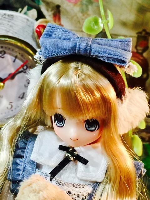orange_pekoe_7_2021_2_22_IMG_1878