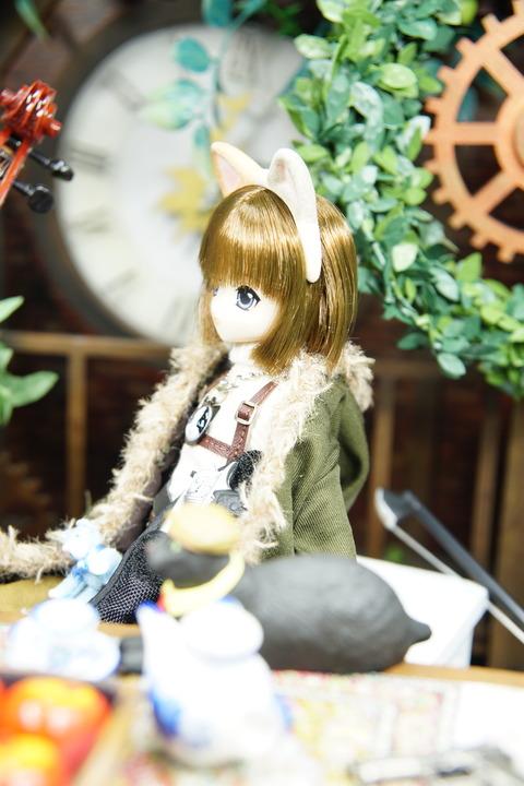 orange_pekoe_2_2019_7_13DSC06149