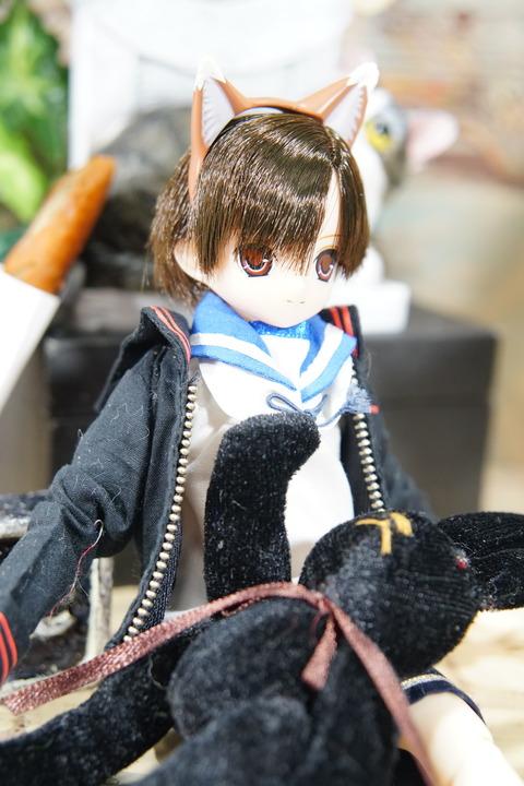orange_pekoe_2_2020_6_21_DSC07770
