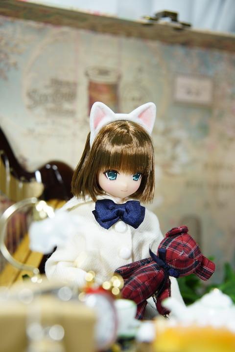 orange_pekoe_8_2018_6_21_DSC04542