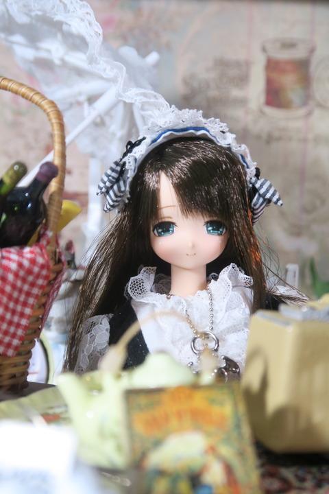 orange_pekoe_8_2017_8_16_IMG_7398