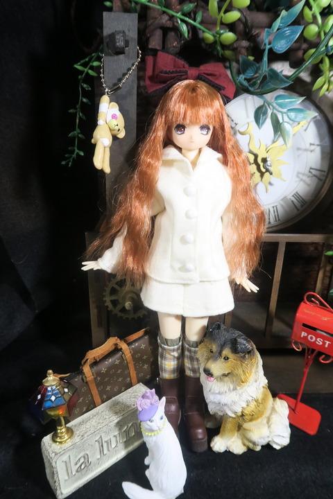 orange_pekoe_1_2017_6_8_IMG_4961