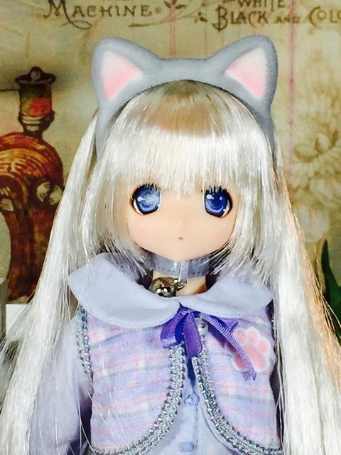 orange_pekoe_1_2017_6_16_IMG_3665