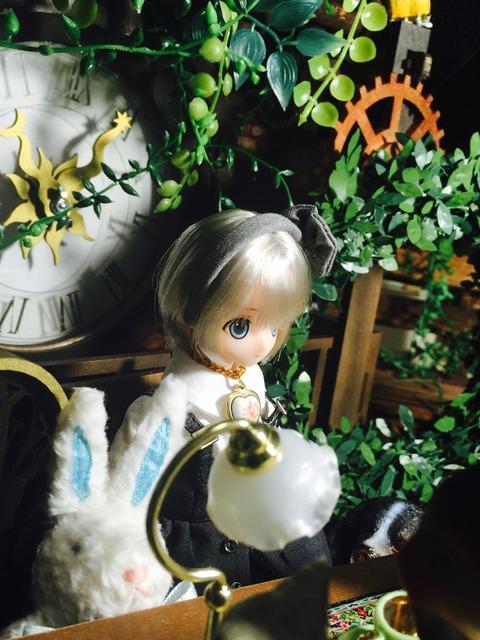 orange_pekoe_1_2016_11_24_IMG_7095