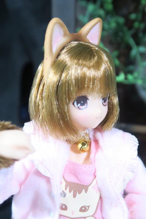 orange_pekoe_8_2017_4_30_IMG_6890